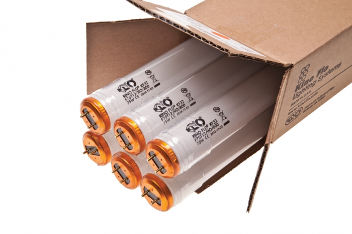 4FT KINO 800MA KF32 Safety-Coated - Tungsten - Packed in 6pk