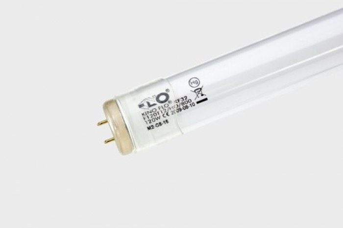 8ft Kino 800ma KF32 Safety-Coated - Tungsten